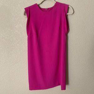 Ann Taylor Fuschia Dress